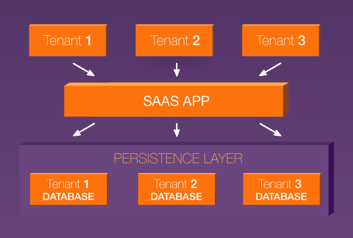 Separate database architecture in a multi-tenant SaaS application