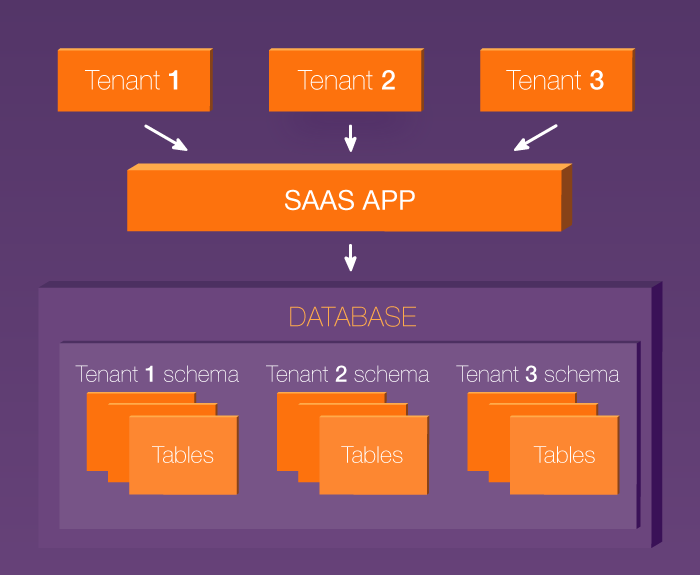Shared database architecture in a multi-tenant SaaS application