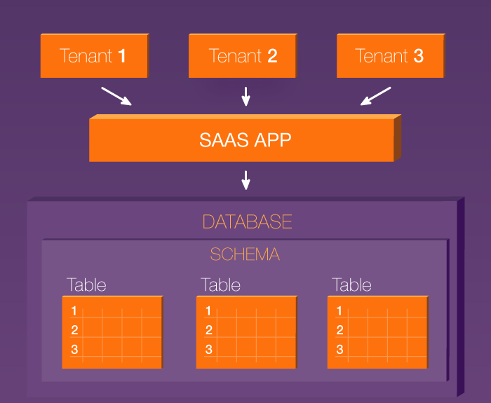 Shared schema architecture in a multi-tenant SaaS application