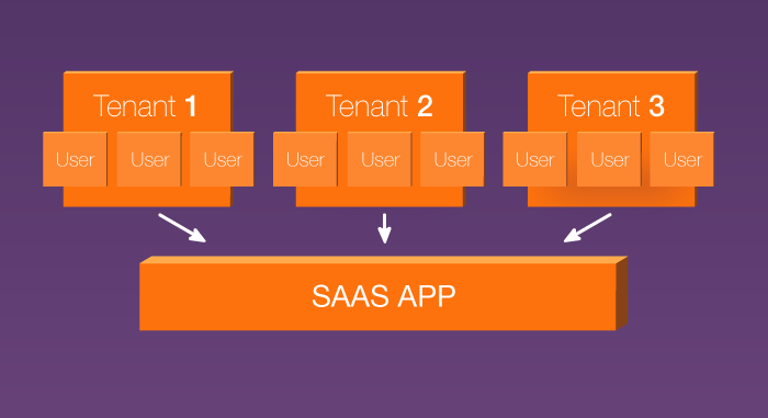 Multi-tenant Software as a Service application
